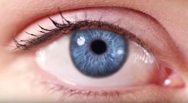 The Big Eye - The Revolutionary News Portal - Alternative News - Anti-War - Search Portal